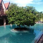 Mango Hill USP...The Pool:)