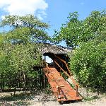 Falsethorn Treehouse at Pezulu Tree House Lodge