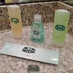 Room 306 bath amenities