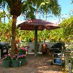BBQ Tiki gardens