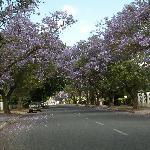 Street in Robertson