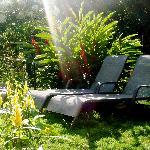 Enjoying the sun at Coconut Lodge