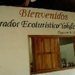 Yokdzonot Cenote & Restaurant