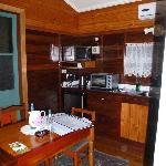 Kitchenette in the Cabin