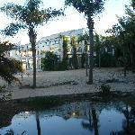 Vista desde el Bosque