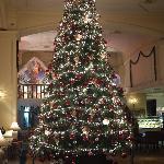 Christmas Tree - Impressive!