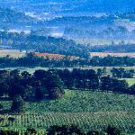 Stunning Views of the Yarra Valley