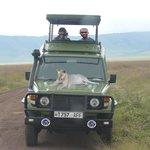 Freddy's 4x4 Jeep Safaris