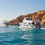 Foto di Emperor Divers Sharm El Sheikh