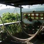 Hammocks next to dining room