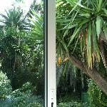 vue chambre coté jardin