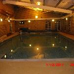 the swimming pool at the ALEXANDRIA