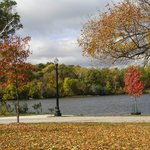 A view from the Fox River Bike Trail.