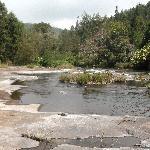 Eco Escape - property forest stream