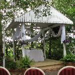 Beautiful Bli Bli House Wedding