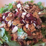 Sonoma Salad-Spring Mix, Dried Cranberries, Honey Almonds, Stella Blue Cheese Crumbles + House B