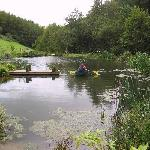 Pond situated on our Devon Wildlife Farm Trail