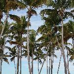 Gran Bahia Principe La Romana Beach