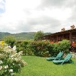 Il giardino privato