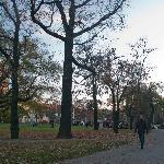 Autumn in Charles Square, Prague