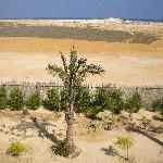 Vista sul deserto dalla camera