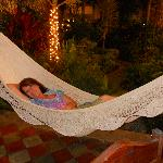 Highly Recommend the Hammocks