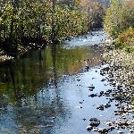 Foto de Blackwater Falls State Park Lodge