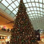 Xmas tree at Galleria Shopping Mall