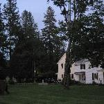 view from the front lawn