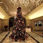The lobby Christmas Tree