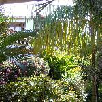 Il giardino di Villa Sapotille