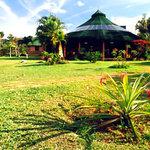 Photo of ecologicol lodge Ya-koo c.a.