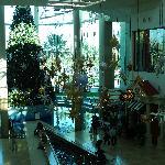 2011 Dec