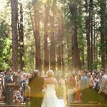Wonderfully serene setting for weddings!