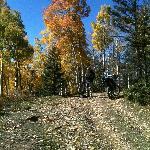 near sawmill pass
