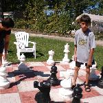 how about a game of chess?