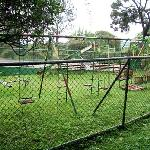 Rusted swing set