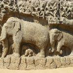 Rock carving Mamallapuram