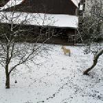 Harzer Land - Blick auf benachbarten Bauernhof