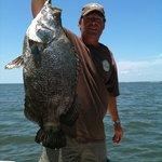 Big tripletail await your fishing desires!