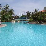 Ayodya Pool