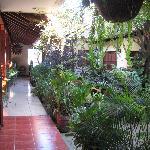 Inner garden to hotel