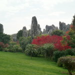 stone forest with changing colours