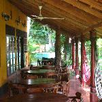 restaurant patio with hammocks