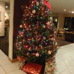 Christmas tree in the lobby!