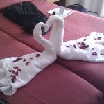 The Swan Towels and petals