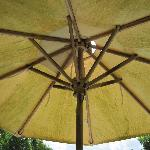 SINGLE UMBRELLA