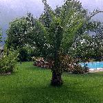 Il parco di Villa Mirella Beach