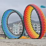 crazy big kites on a nearby beach