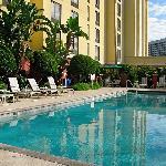 Pool with Marriott Westshore across the street.